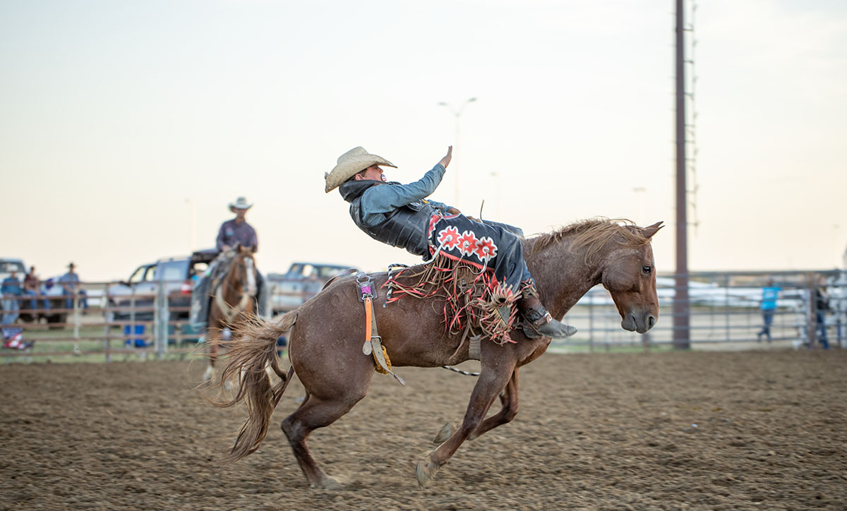 A bronc rider attempts to hold on for eight seconds at the Campbell County Fair in 2019.