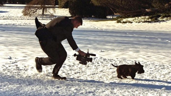 Cameraman chasing Barney in the snow (Courtesy Cowboy State Daily).