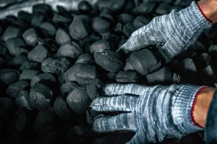 Stock photo: Man's hands in gloves holding natural black coal for back.