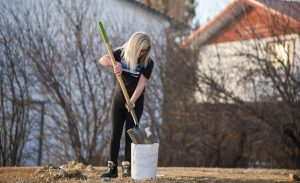 Calli Good, 11, shovels up dead grass and other remnants in a yard. (Photo: County 17/Brooke Byelich)