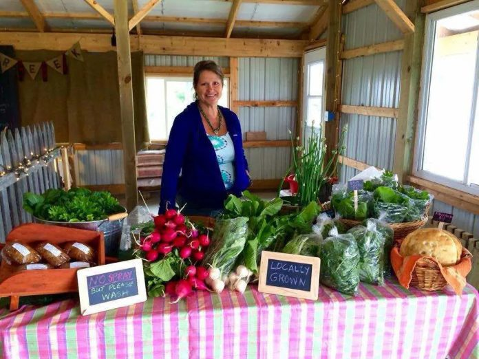 Sublette farmer Maggie McAllister is an advocate for Medicaid expansion. She has long gone without health insurance coverage because it's too expensive, she said. (Photo: Maggie McAllister)