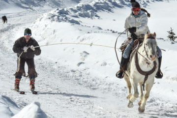Horse and rider pulling a skijorer